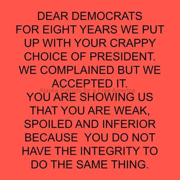 dear-democrats